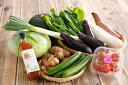 ショッピングふるさと納税 アイス 【ふるさと納税】野菜セット+オリジナルつけだれ(1本)セット【約1.5kg〜2kg+つけだれ1本】