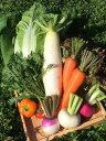 【ふるさと納税】季節の野菜セット