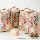 【ふるさと納税】【T-533】よこいファーム 特別栽培米コシヒカリB(黒にんにく付)【頒布会12カ月】