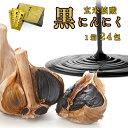 【ふるさと納税】玄米核酸 黒にんにく ペースト 大蒜 舞鶴産黒ニンニク【送料無料】