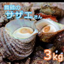 【ふるさと納税】海の街 舞鶴のサザエさん 3kg 活さざえ 3キロ【送料無料】