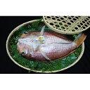 樂天商城 - 【ふるさと納税】浜文丹後ぐじの一夜干※天候により不漁の場合お届けに1〜2ヶ月かかる場合がございます