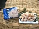 【ふるさと納税】ボテッと大きなホタテ貝柱くん:生食用(1kg...