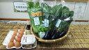 【ふるさと納税】有機野菜JAS認定京都野菜・こだわり卵・黒豆味噌セット