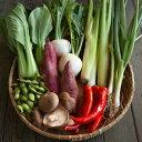 【ふるさと納税】<坂ノ途中>旬のお野菜セット(S):1回お届け※栽培期間中農薬・化学肥料不使用