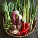 【ふるさと納税】<坂ノ途中>旬のお野菜セットS:5回