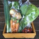 【ふるさと納税】【月一定期便】京都長尾ファームの旬の野菜セッ...