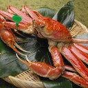 【ふるさと納税】京丹後市産 茹で間人蟹(たいざがに) 厳選 中大サイズ...