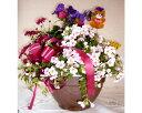 【ふるさと納税】季節の花や観葉植物の寄せ植え アレンジメントA