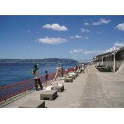 【ふるさと納税】059:神戸市立海づり公園ご招待券(4時間分)1枚