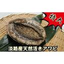 【ふるさと納税】B127*特大!淡路産天然活きアワビ(赤)1...