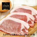 【ふるさと納税】BY47*えびすもち豚ロースかつ用900g(300g×3パック)冷凍