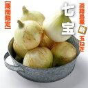 【ふるさと納税】BY77*淡路島産 早生玉ねぎ「七宝」 10...