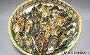 【ふるさと納税】坂越かき 殻付き(25個〜30個) 【魚貝類...