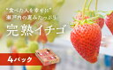 【ふるさと納税】赤穂市産イチゴ 200g×4パック 【果物類...