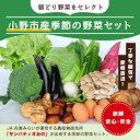 【ふるさと納税】小野市産季節の野菜セット! 【野菜類・セット・詰合せ】