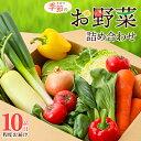 【ふるさと納税】加西市産 季節の野菜詰め合わせセット 【野菜...