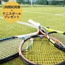 【ふるさと納税】【関西唯一】天然芝テニスコート(1時間)利用...