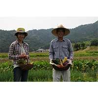 【ふるさと納税】200 ファームビジット(収穫体験)プレミアムランチつき