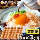 【ふるさと納税】010AB03N.タズミの卵(30個×3ヶ月...