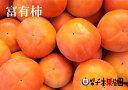 【ふるさと納税】富有柿 5kg (14〜21個入)※着日時はご指定いただけません11月中旬から順次発送
