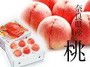 【ふるさと納税】奈良県産桃※着日時はご指定いただけません