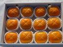 【ふるさと納税】たねなし柿5kg箱(17〜18個)※10月上...