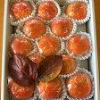 【ふるさと納税】冷蔵富有柿(一個250g以上の柿を13個)