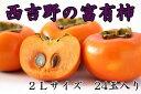 【ふるさと納税】[本場の柿]奈良・西吉野の富有柿24玉入り(...