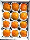 【ふるさと納税】ハウス柿(Mサイズ12個入)※7月中旬〜9月...