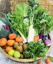 【ふるさと納税】産地直送!新鮮とれたて季節の野菜&フルーツセット