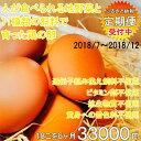 【ふるさと納税】地野菜育ちの平飼いタマゴ「遊鶏卵」18こ6か月セット 2018年07月発送開始