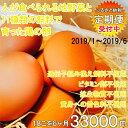【ふるさと納税】地野菜育ちの平飼いタマゴ「遊鶏卵」18こ6か...