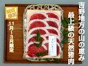 【ふるさと納税】吉野産 天然猪肉 特選吉野牡丹480g...