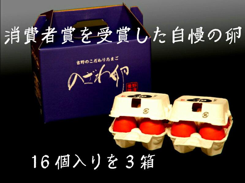 【ふるさと納税】のざわ卵