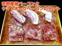 【ふるさと納税】吉野ハム(吉野産猪ベーコン・ヤマトポークベー...