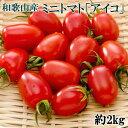 【ふるさと納税】【4月出荷分】和歌山産ミニトマト「アイコトマト」約2kg(S・Mサイズおまかせ)