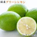 【ふるさと納税】【産直】和歌山産グリーンレモン約3kg(サイズ混合)