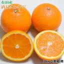 【ふるさと納税】有田産清見オレンジ10kg(M~3Lサイズおまかせ)ご家庭用