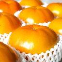 【ふるさと納税】柳フルーツ園の富有柿【1021101】
