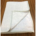 【ふるさと納税】シール織さわやかタオルケット (ブルー) 野上織物株式会社【1082917】