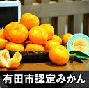 【ふるさと納税】送料無料 有田市認定みか...