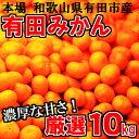 【ふるさと納税】厳選 有田みかん「未来への虹」10kg 送料...