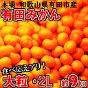 【ふるさと納税】大粒・2L 有田みかん「...