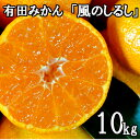 【ふるさと納税】有田みかん「風のしるし」10kg 送料無料