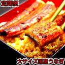 【ふるさと納税】◆定期便◆国産うなぎ蒲焼大サイズ2本セット(6か月お届け)