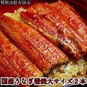 【ふるさと納税】国産うなぎ蒲焼き大サイズ2本セット