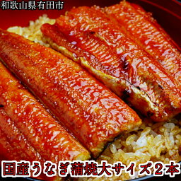 【<strong>ふるさと納税</strong>】国産<strong>うなぎ</strong>蒲焼き大サイズ2本セット