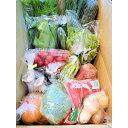 【ふるさと納税】旬の新鮮野菜セットたっぷり15種以上