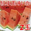 【ふるさと納税】紅小玉すいか(ひとりじめ7)2玉...